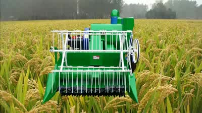 4LZ Mini Combined Harvester for Wheat and Rice