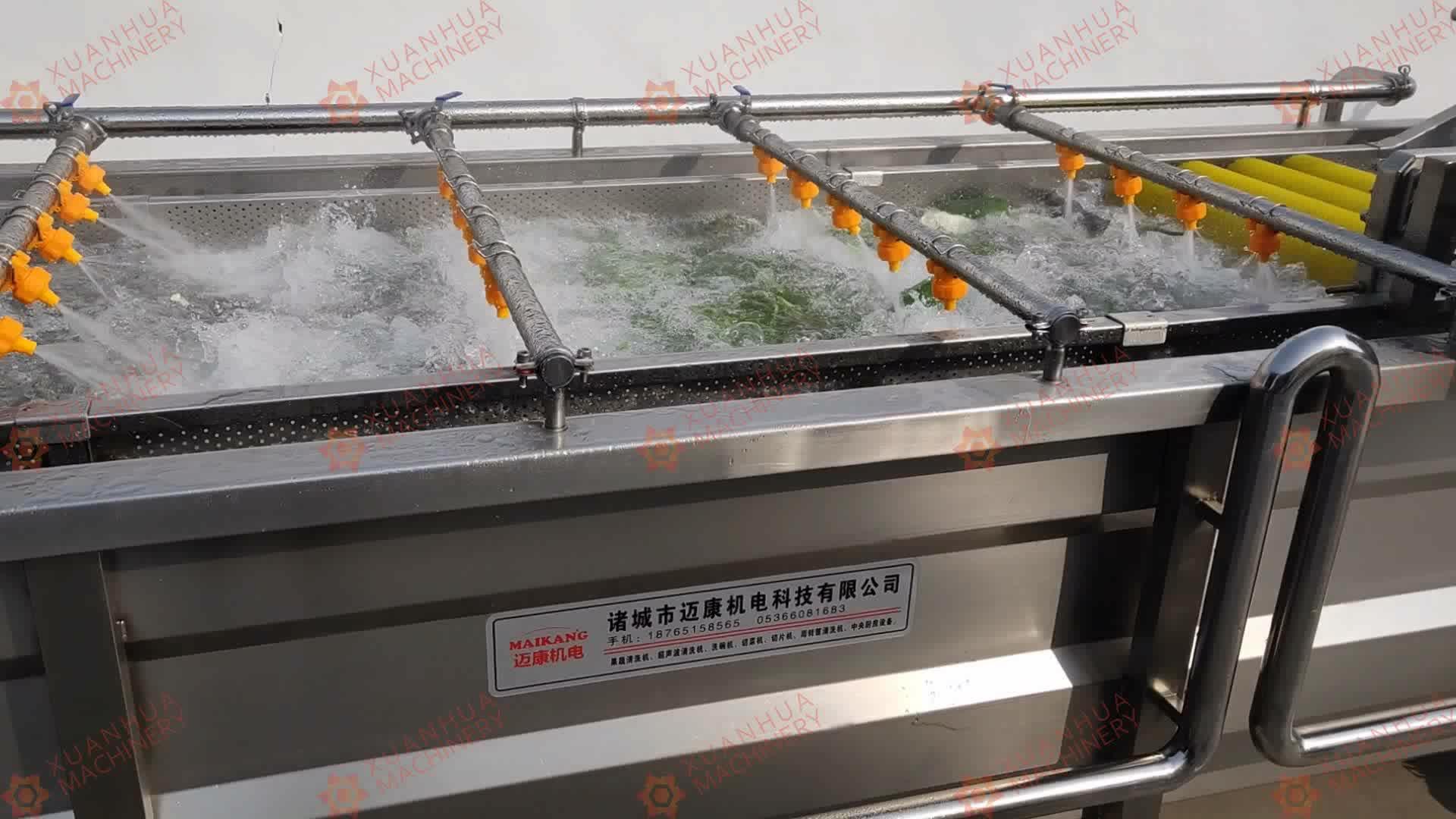 อัตโนมัติ Air Blower ผลไม้และผักความชื้นขนาดเล็กแนวนอนผัก spinner เครื่องเป่าองุ่น