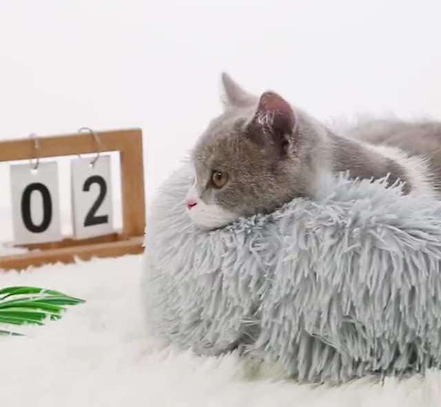Invierno cálido y acogedor ronda de peluche para mascotas cama lavable sueño profundo perro gato cojín/
