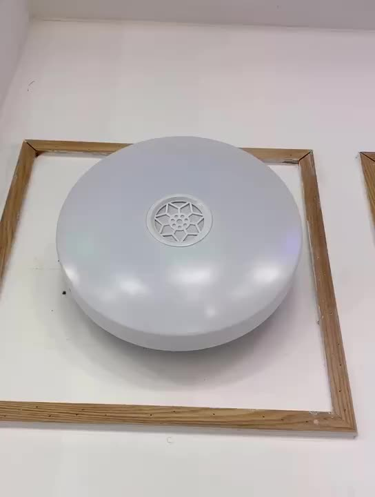24W RGBW Dimmable Round Mount Lighting Smart APP Control Music Modern Ceiling Lamp with Bluetooth Speaker