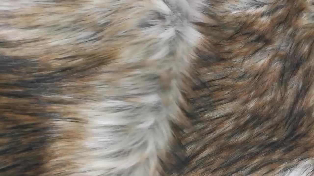 Factory Price Soft Touch High-pile Printed Artificial Wool Faux Fur Fabric plush