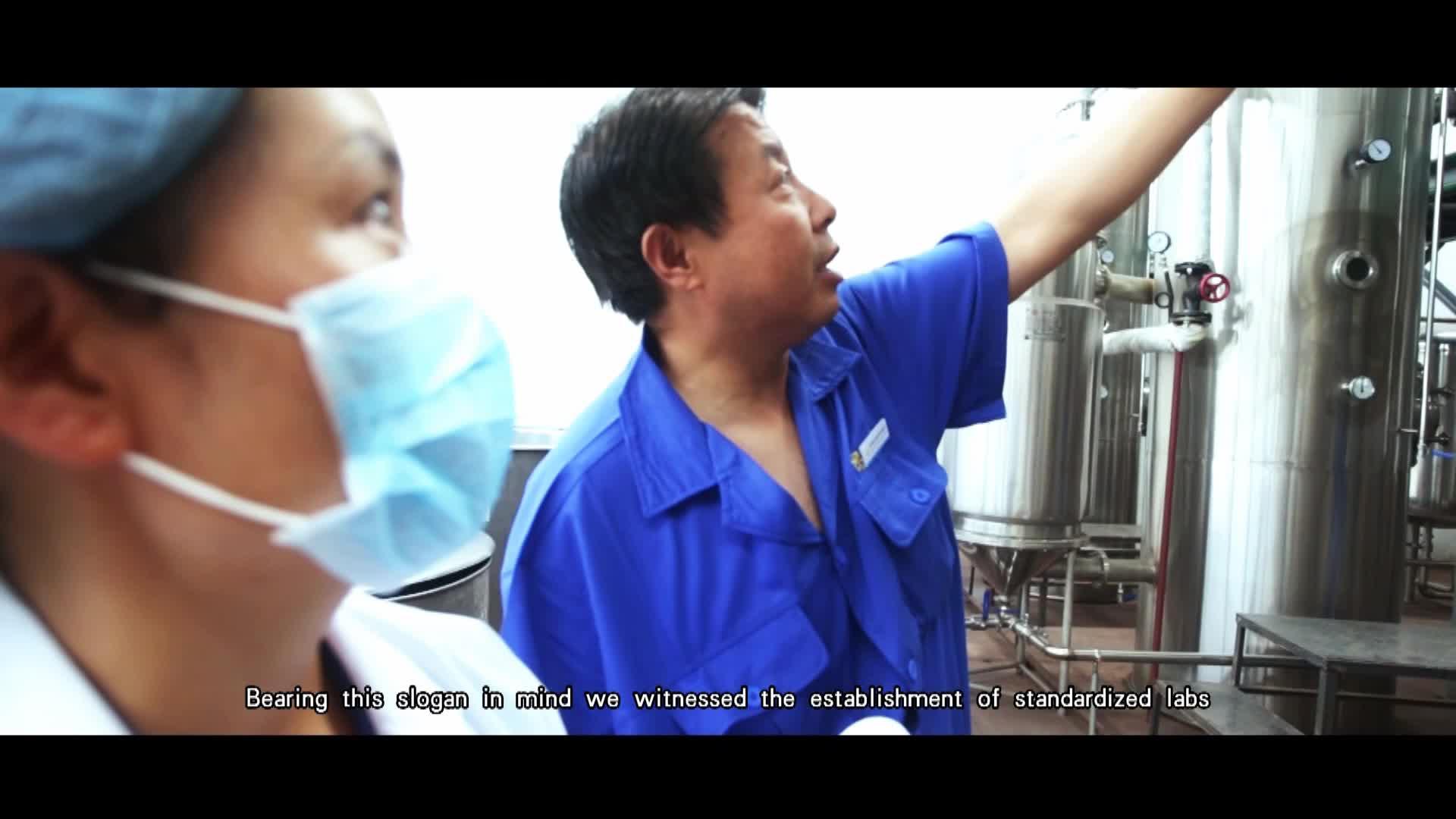 Pure Natural Green Papaya Extract Powder