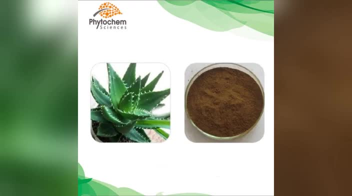 100% natural Aloe Vera Gel Freeze Dried Powder