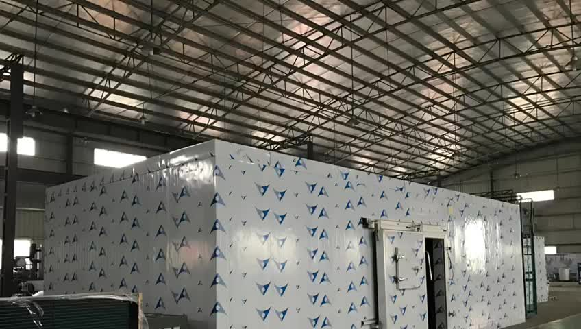 Commercial Sandwich Wall Cold Room Panels Walk in Freezer for Storage