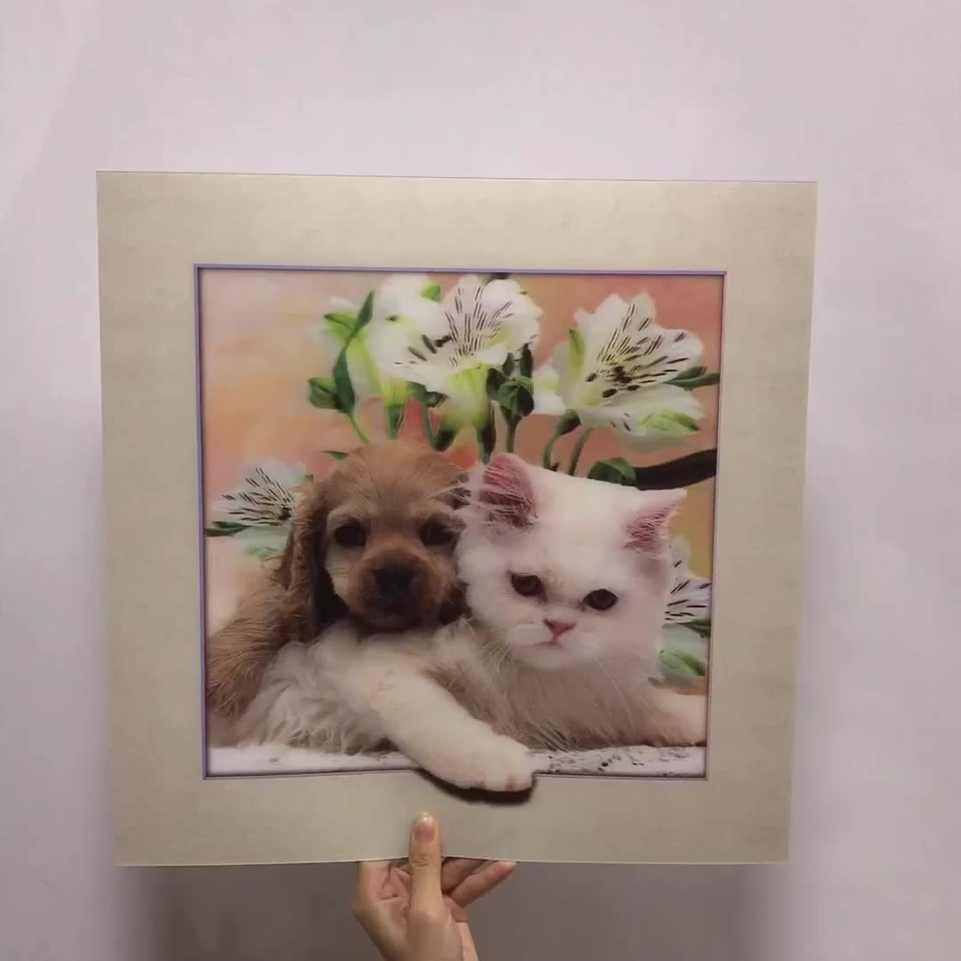 High definition lenticular 5D picture of dog and cat picture