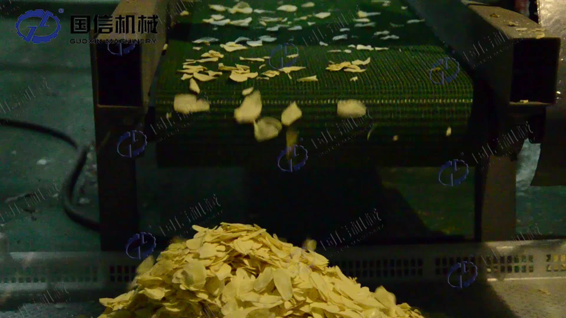 GUOXIN continuous vegetable dehydrator garlic drying machine
