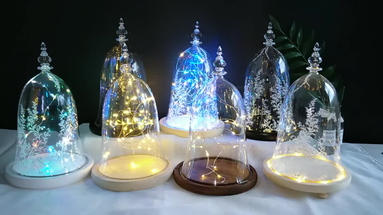 Beauty and the Beast Glass Dome With Led Wood Base For Display Preserved Rose