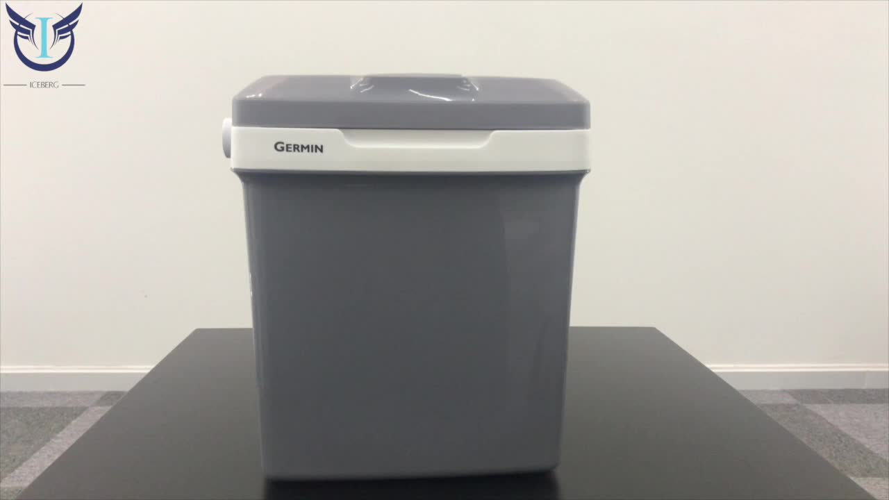 31L cooler box promotional plastic cooler and warmer box insulin cooler box