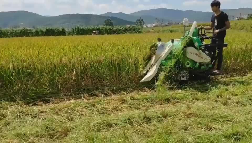4LZ-0.5 pirinç ve buğday biçerdöver