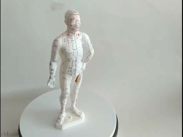 Mini 26cm Human Chinese Teaching Acupuncture Point Model with Acupoints