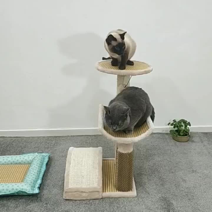 Cat cardboard house cat activity tree with scratching posts