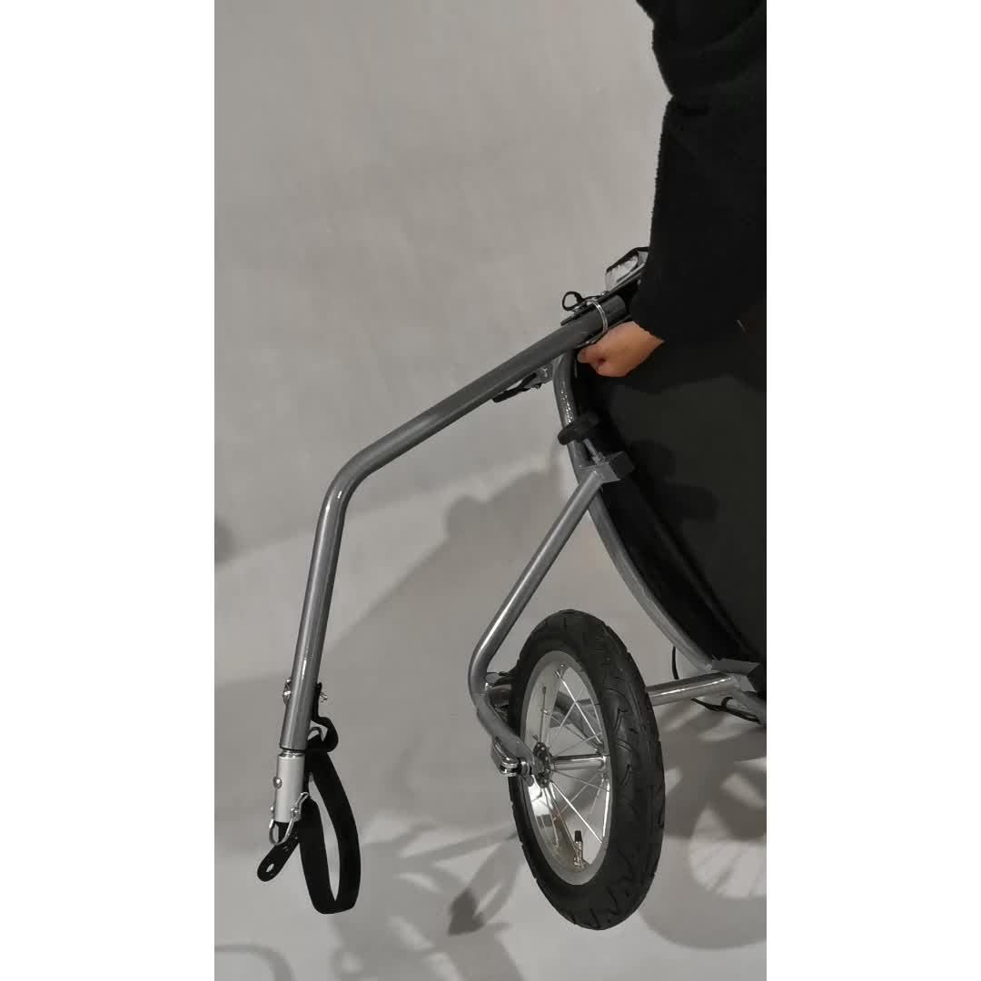 The best hot selling bicycle trailer for baby, high quality baby bike trailer with en certificate