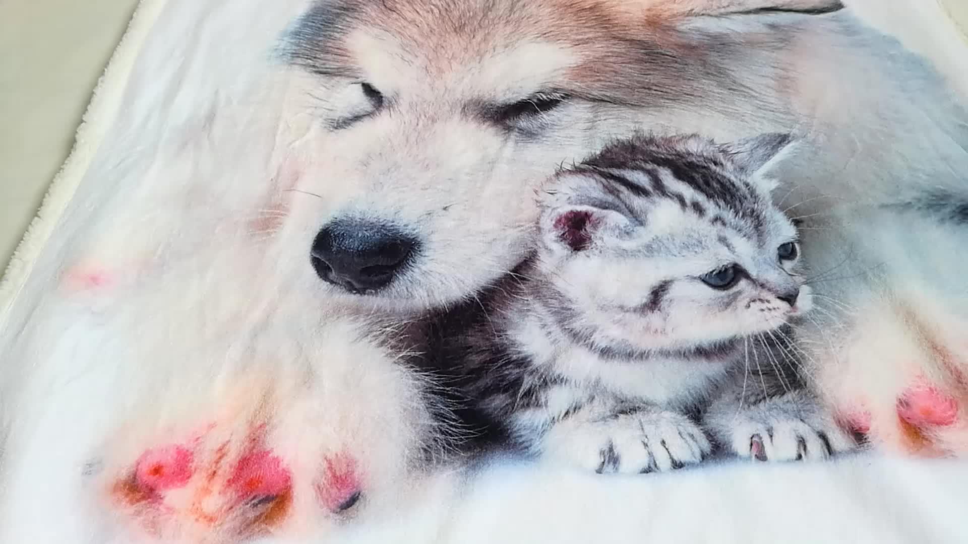 Digitale Een sideprinted baby deken, beagle flanel fleece deken
