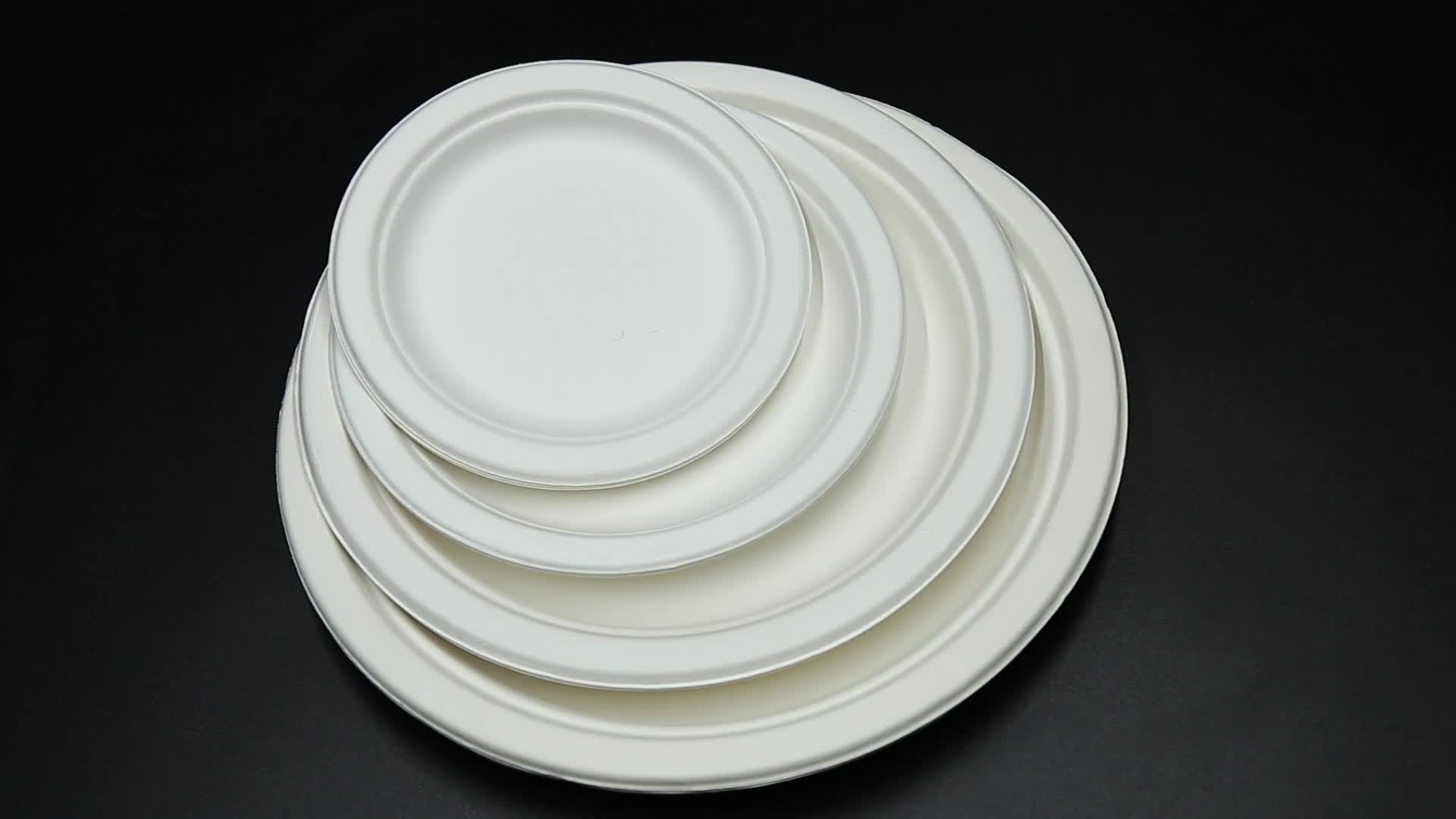 "Disposable Sugarcane Bagasse Tableware Biodegradable 7"" Plates"