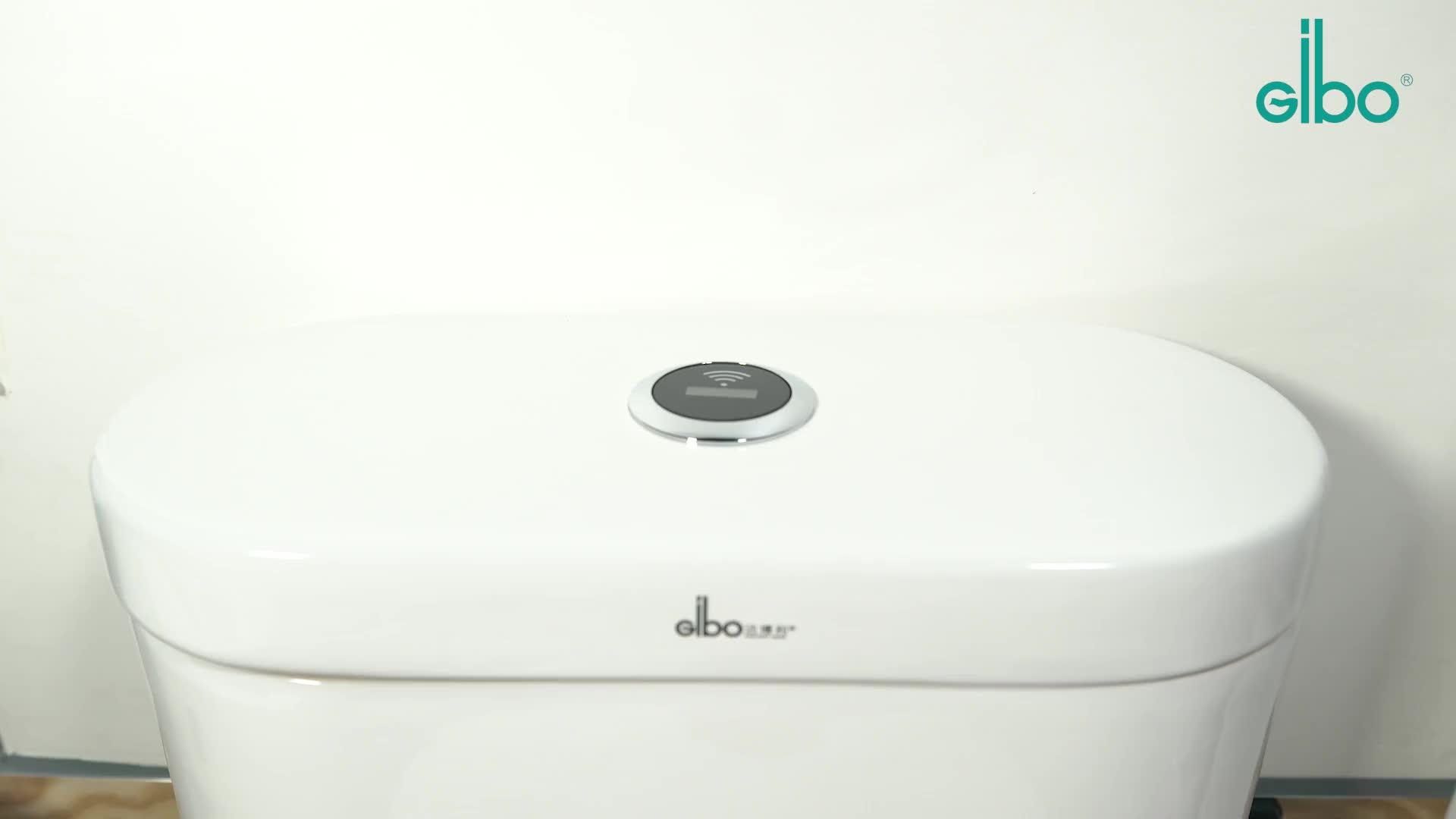Electronic Squatting Pan Sensor Flush Valve Auto Infrared