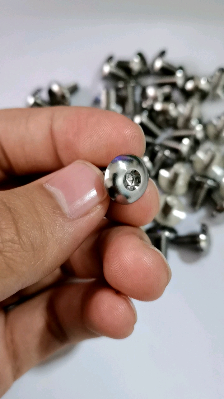 High quality ISO7380 GR5 Titanium socket head round head screw