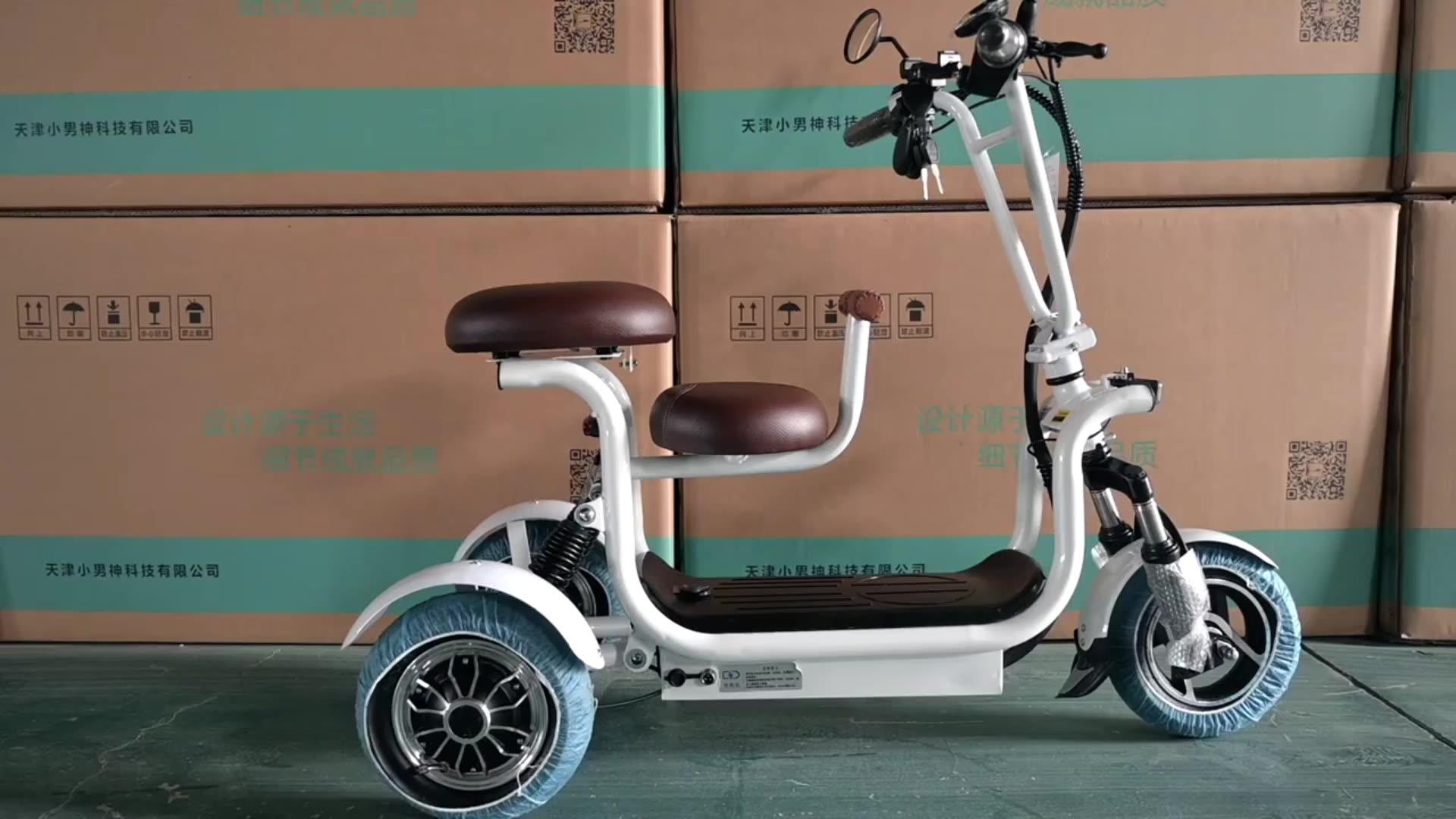 3 rad E Bike Kleine für Ältere Fahrrad Batterie 3 Roller für Erwachsene elektrische dreiräder