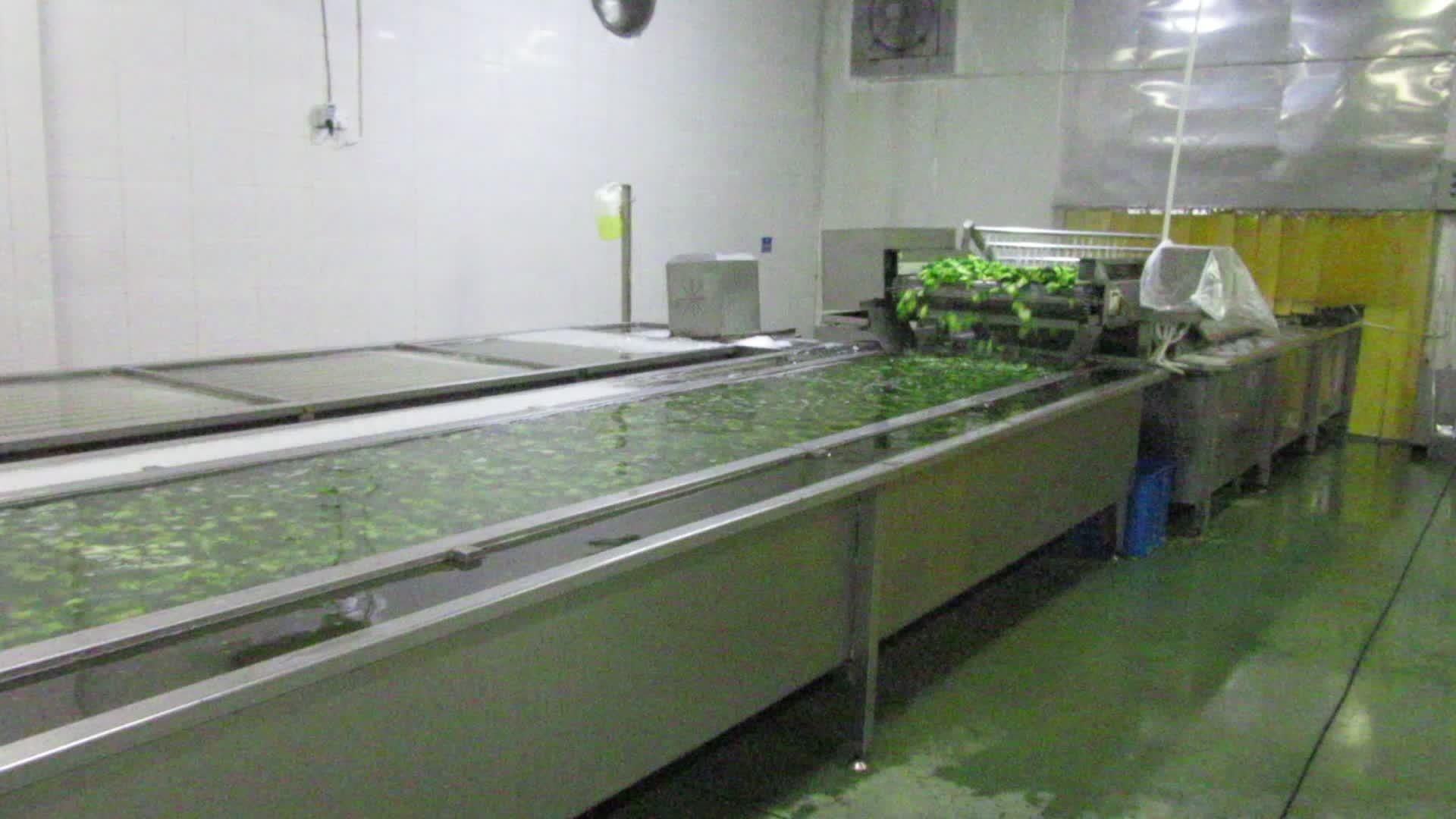 Verduras IQF a granel para brócoli congelado