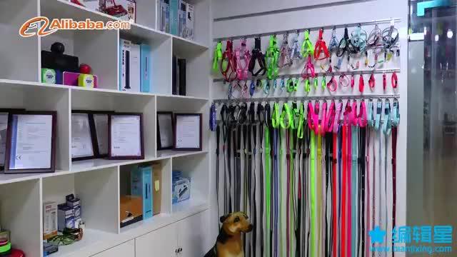 2019 New Design Wholesale Pet Dog Accessories Glow Led Light Flashing Safety  Dog Collar