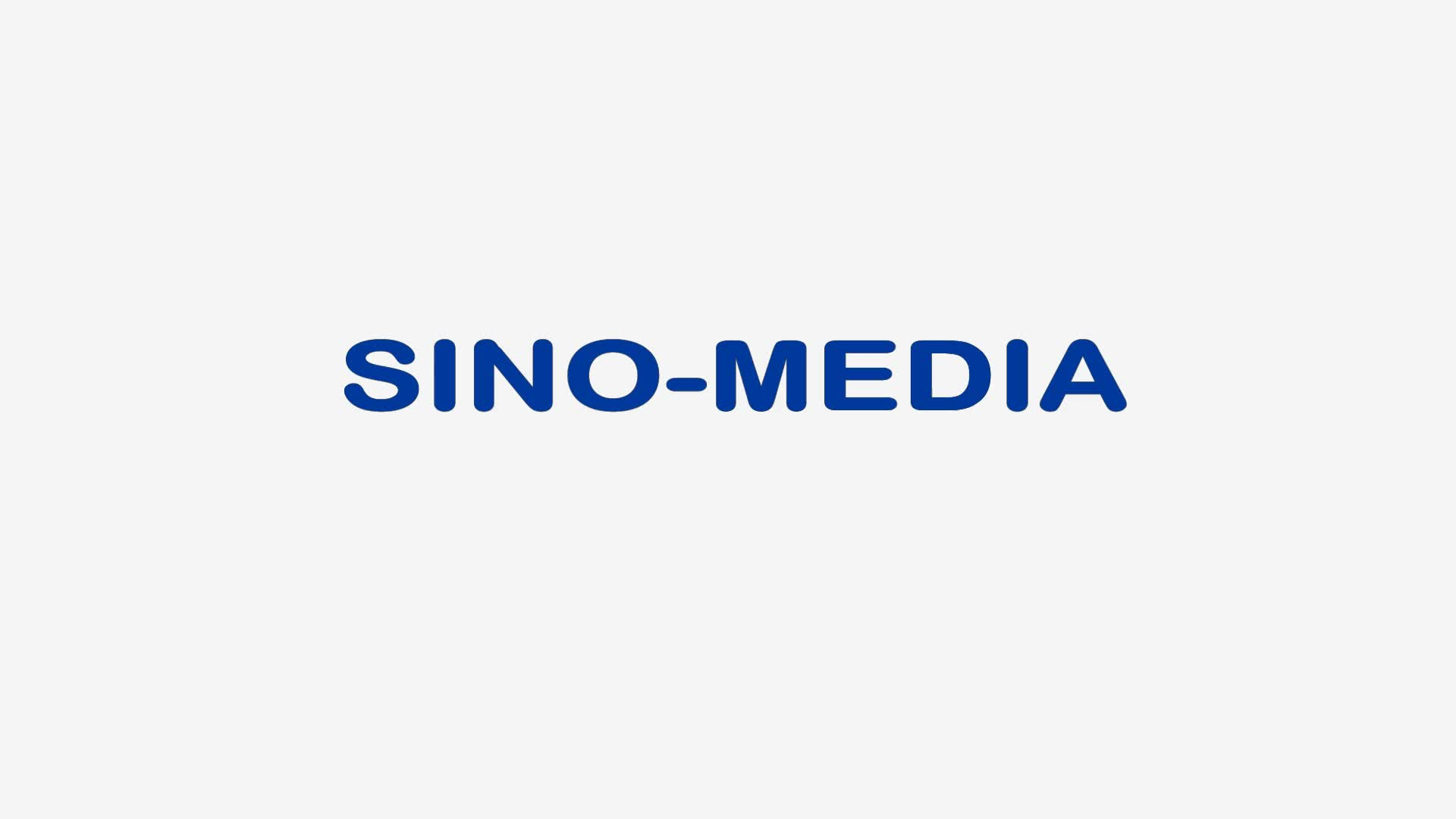 Sino media 20 30 pin micro coaxial lvds cable types  for lcd panel