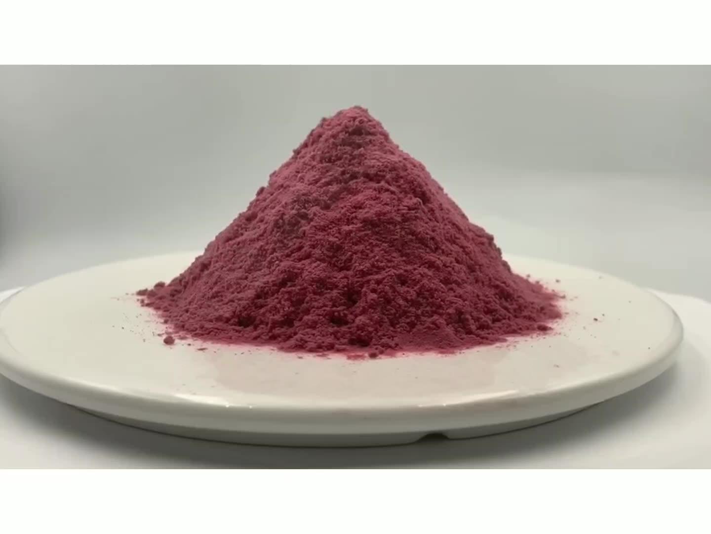 Pure Natural Black Aronia Chokeberry Fruit Powder Black Chokeberry Extract Powder