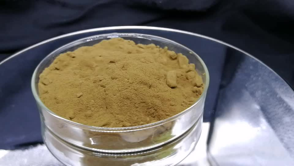 Astragalus extract/astragalus root extract/nettle root extract