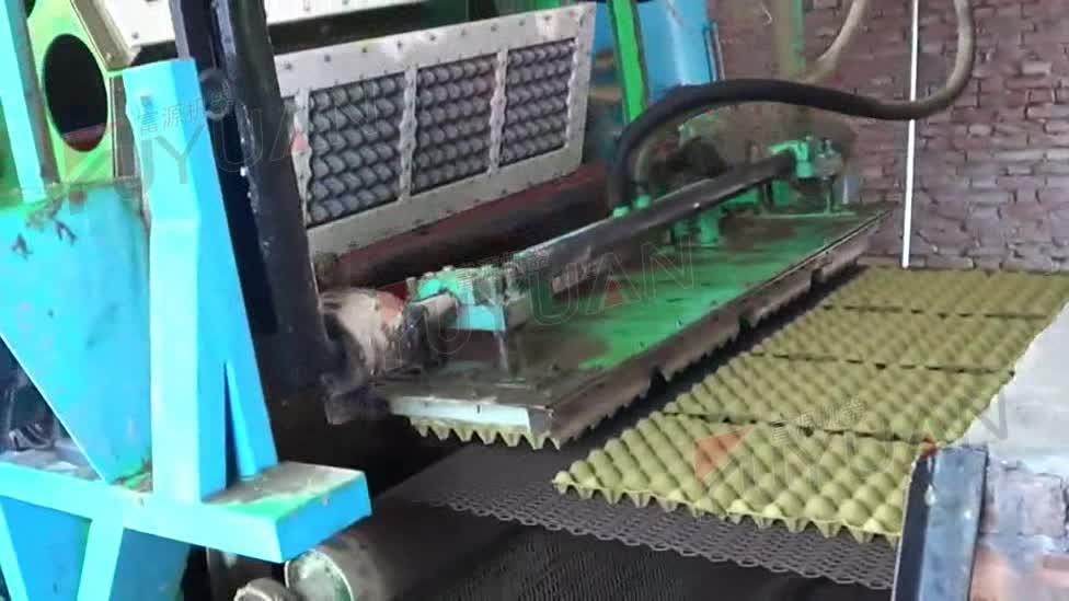 ใหม่เทคโนโลยีกระดาษเยื่อกระดาษMoldingถาดไข่รูป