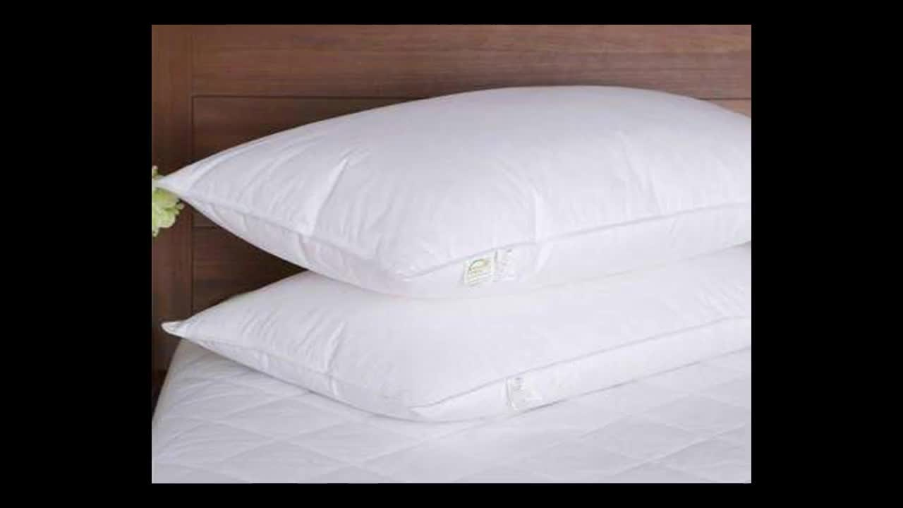 High quality white/grey duck down and feather pillow