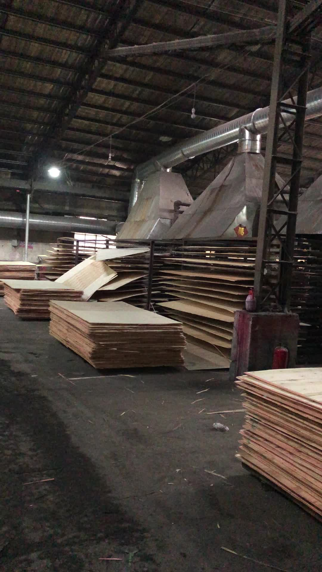 commercial plywood 18mm   Poplar Plywood