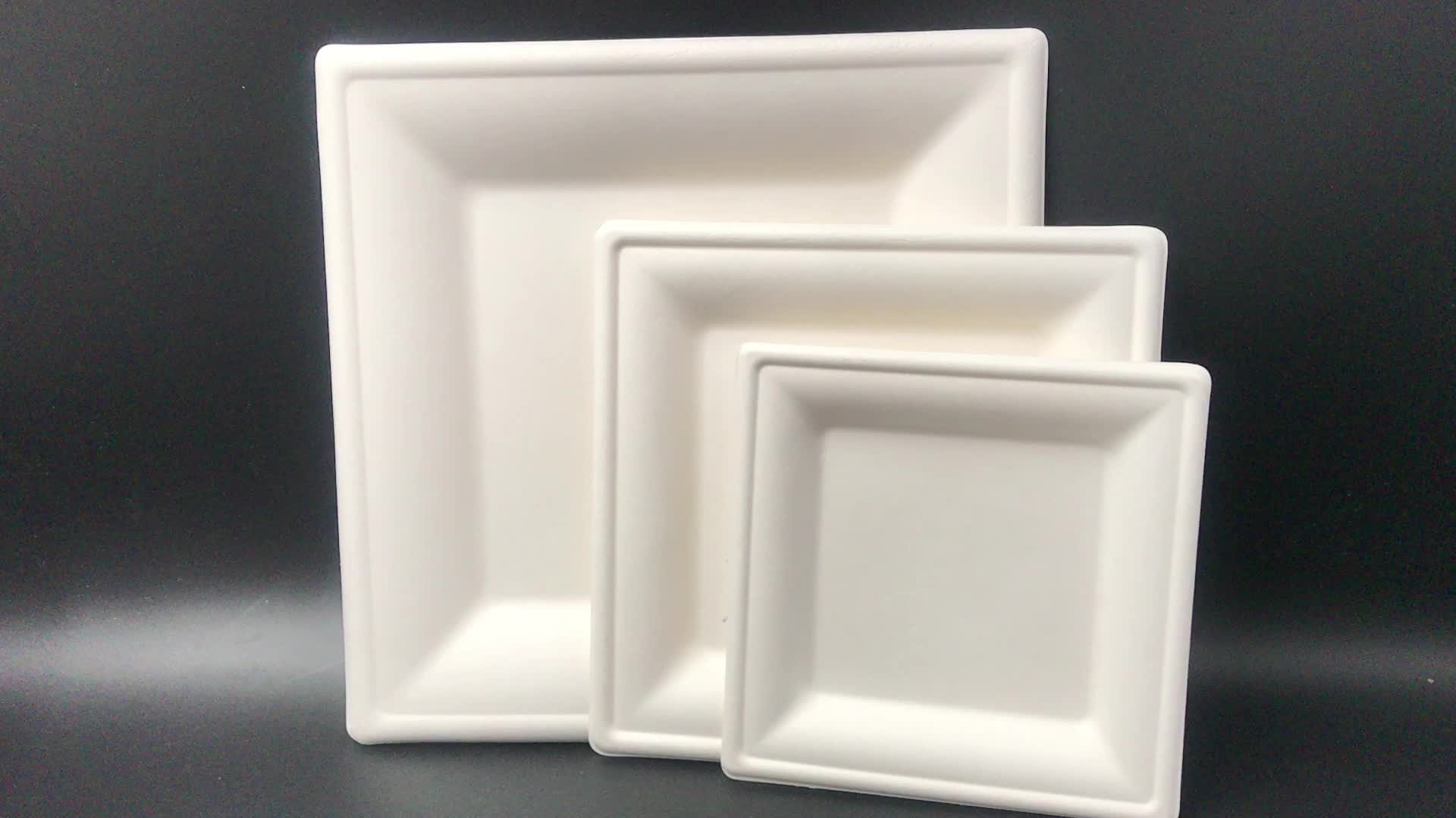 2020 new trends sugarcane plant-based dinner plate disposable biodegradable 8 inch bagasse square plate for weddings