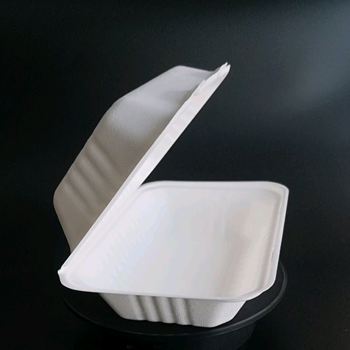 promotional biodegradable compostable paper pulp lunch food box packaging
