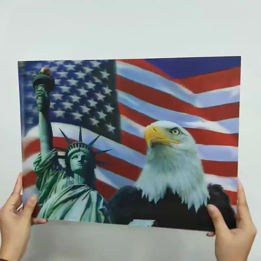Hias Natal 3d Wallpaper American Eagle Buy 3d Wallpaper American Eagle Gambar Dekoratif Wallpaper Plastik Product On Alibaba