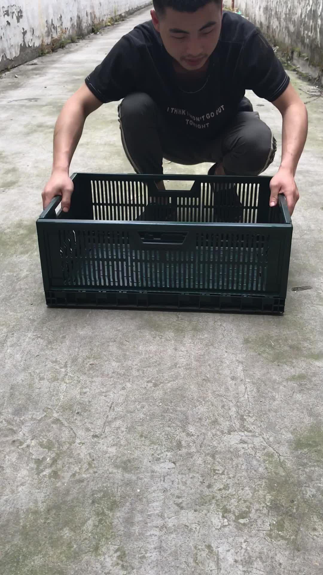 हैवी ड्यूटी बॉक्स प्लास्टिक की तह बक्से के लिए खेती