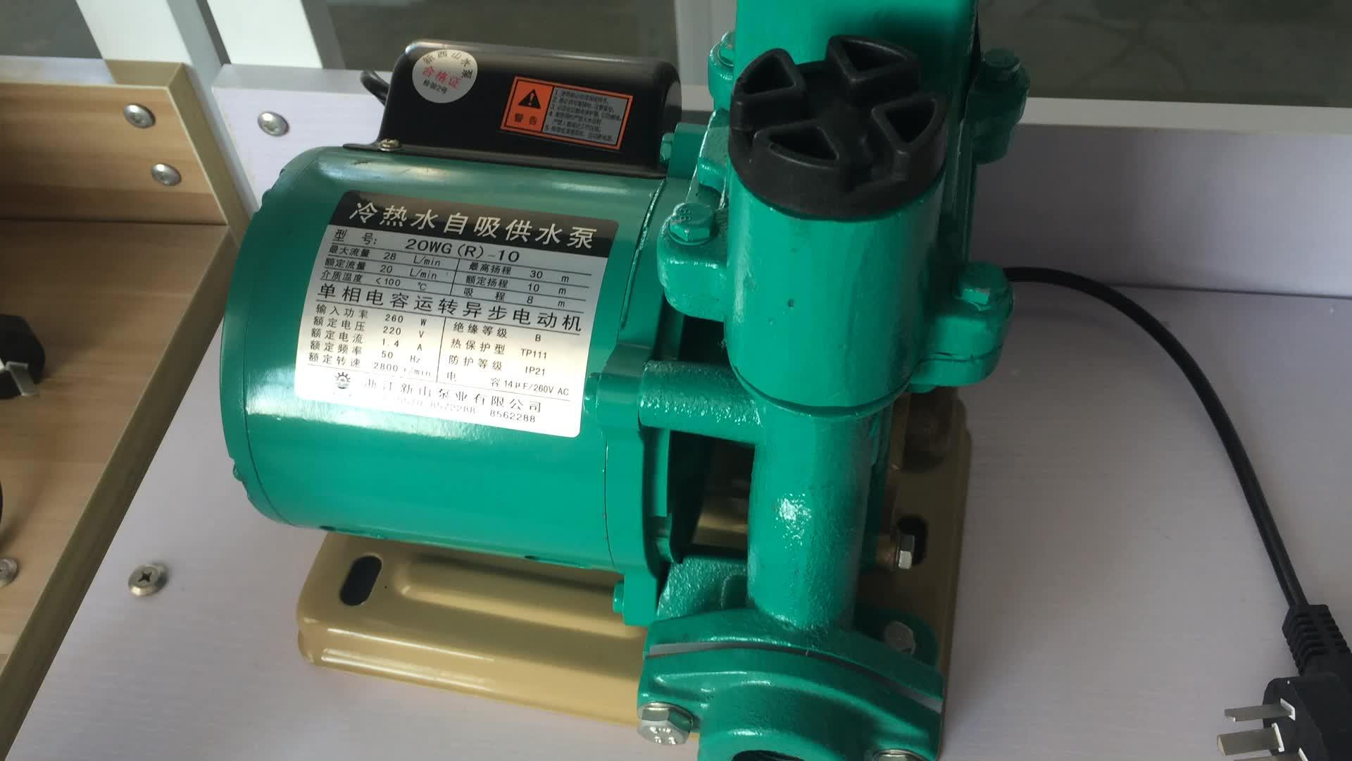 Hot Circulating Self Priming High Pressure 115v Ac 5 Gallon Bottle Diesel Monoblock Water Pump