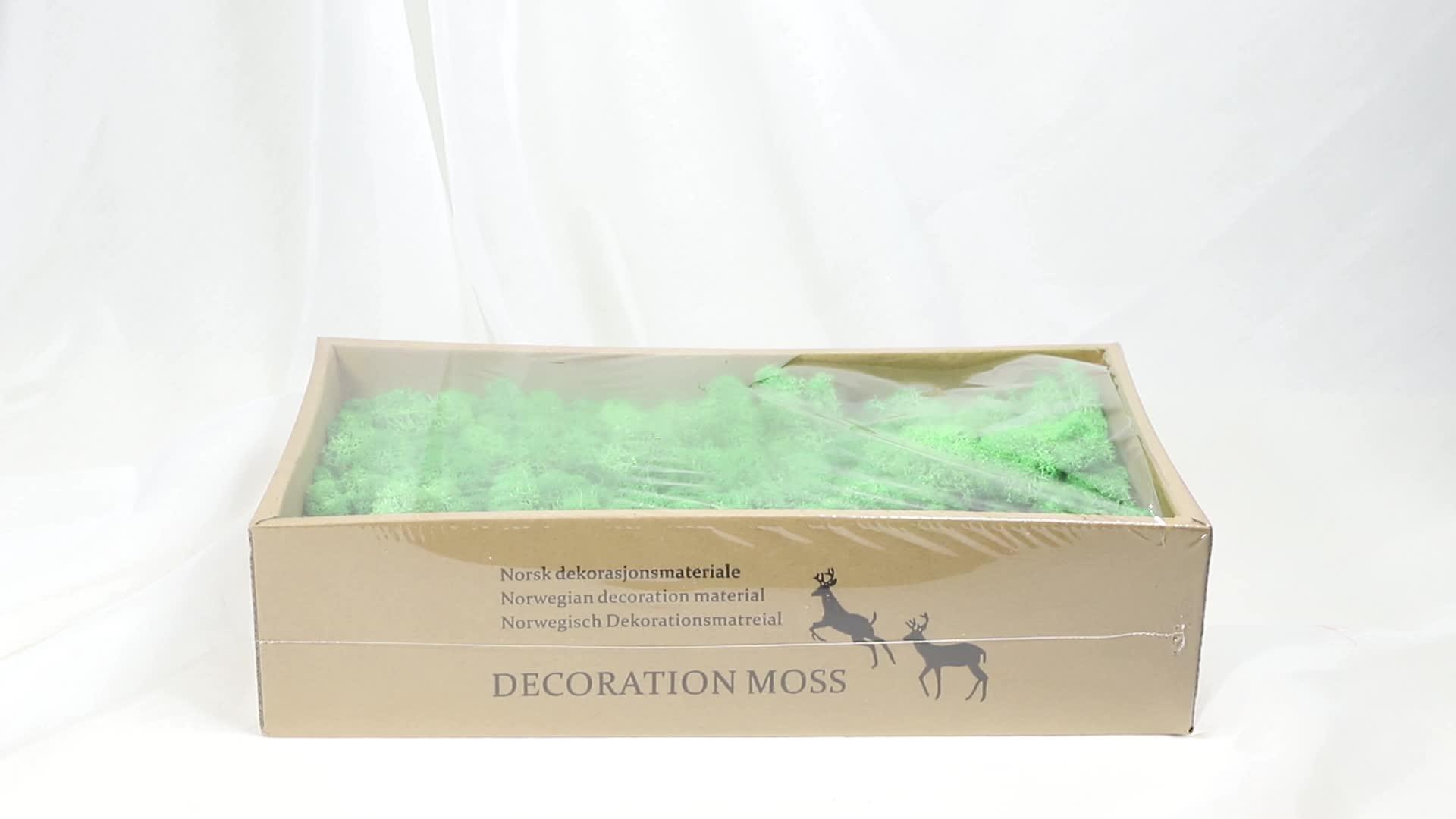 Uit China moss dier bewaard moss diy gebruikt moss konijn