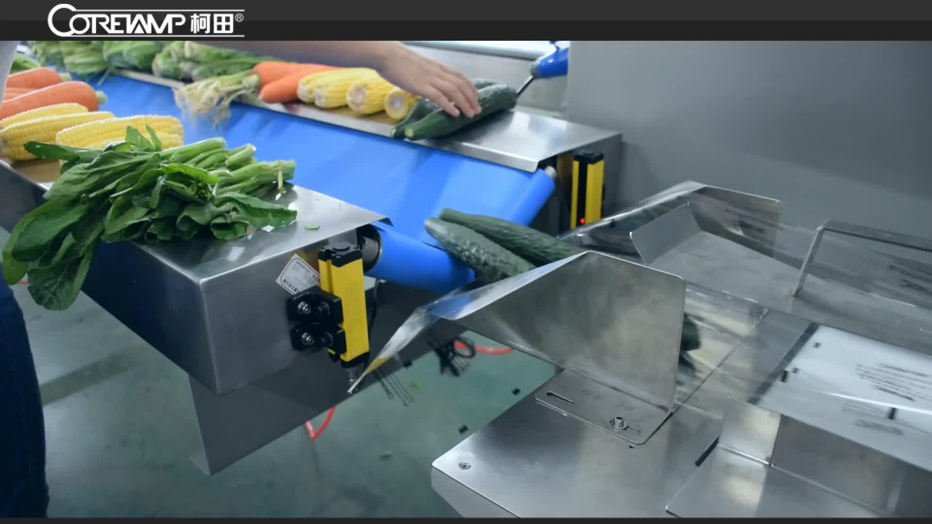 Servo control standard gemüse fluss verpackung maschine mit roller material gürtel