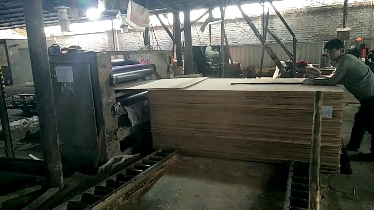 melamine plywood waterproof hardwood plywood for furniture