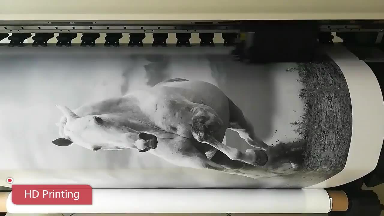 מודרני פרפר רעול פנים איור דיוקן ציור דקורטיבי בד הדפסת קיר יצירות אמנות ציור על בד