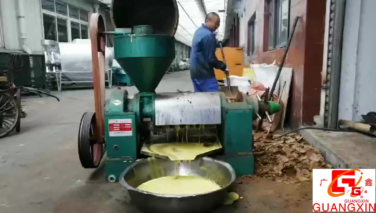 4.5TPD Edible Oil Extraction/Sunflower Oil Mill/Oil Press Machine in China