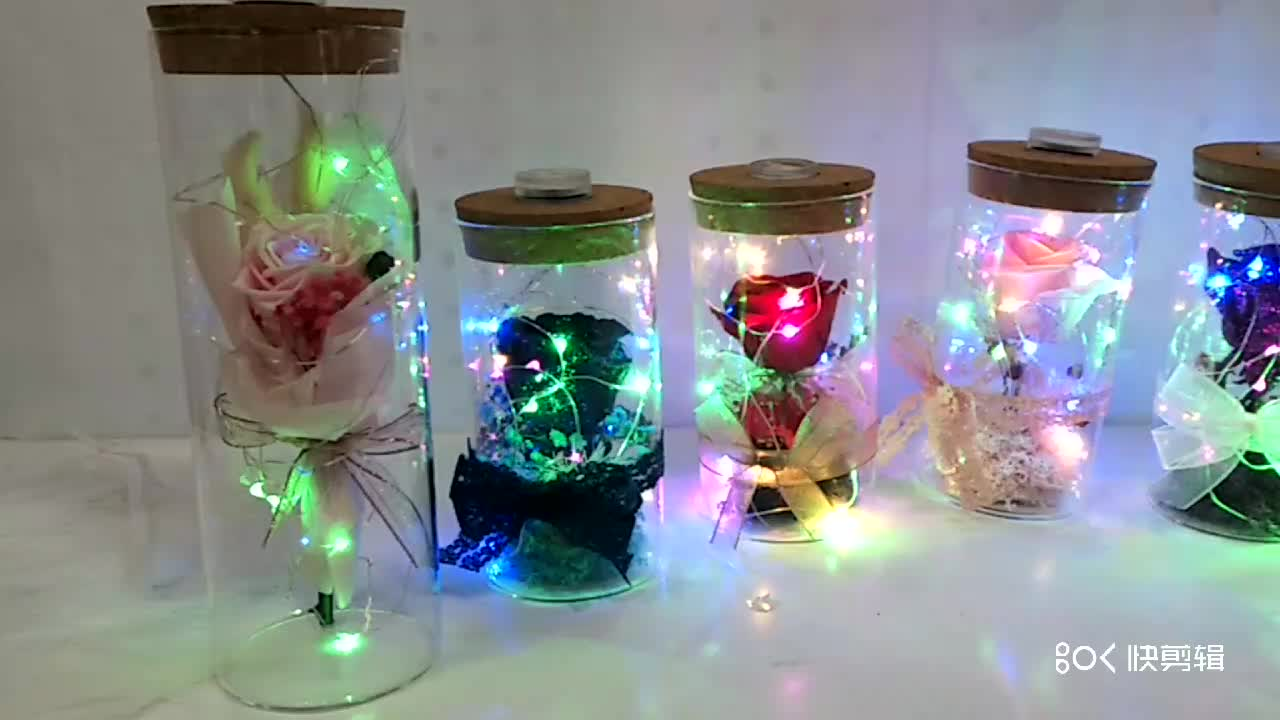 Valentine's Day Anniversary gift  Replaceable battery Preserved Real Rose LED string glass bottle Eternal rose