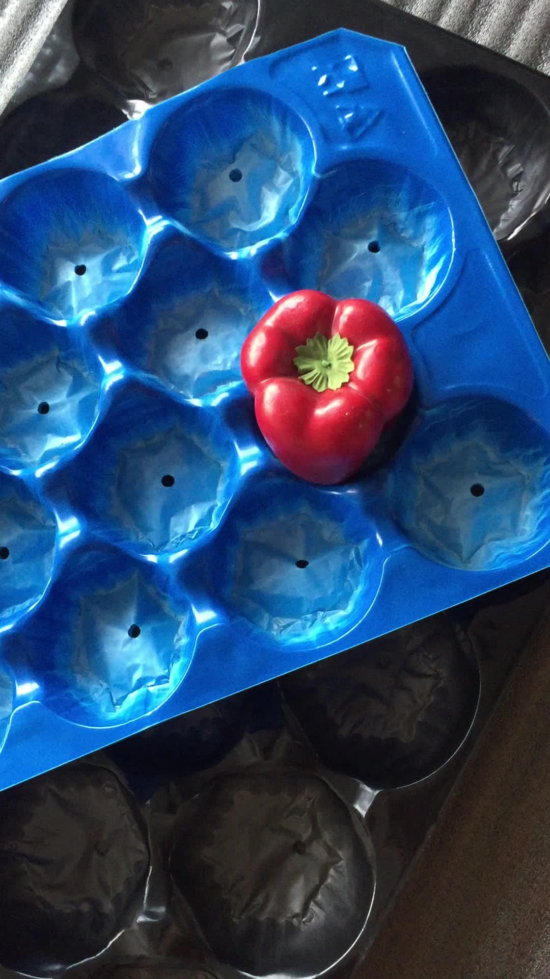 Vácuo formado pacotes de amortecimento forro bandeja de frutas frescas para o tomate