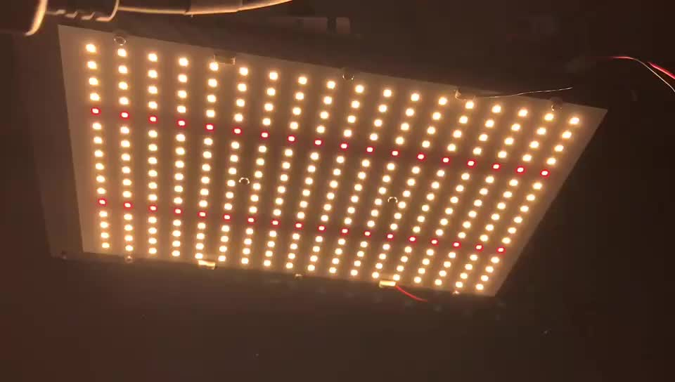 Yuanhui Dimmable 120W QB 288 lm301B 3000K / 3500K Mix 660nm Led Plant Grow Light for Indoor Garden