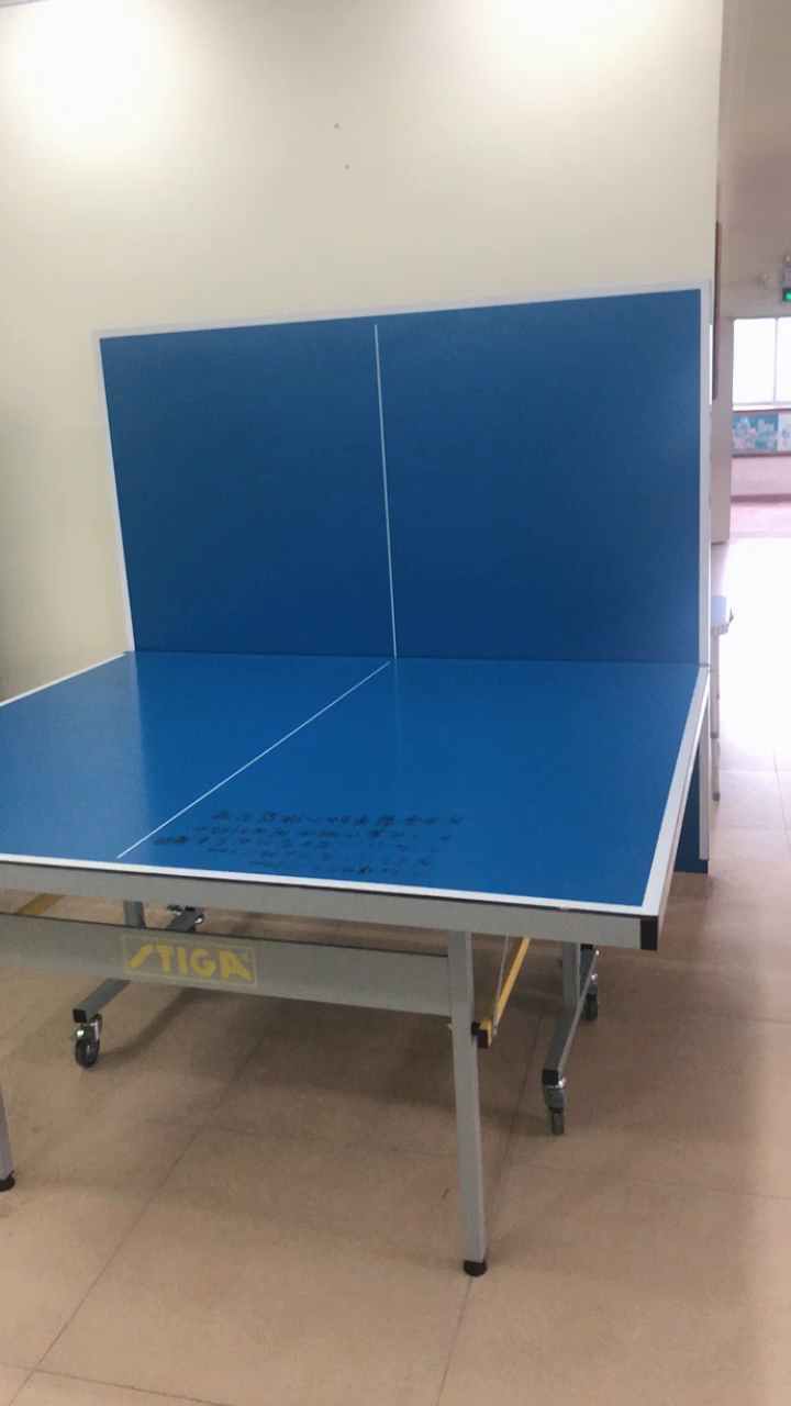 China Cheap Price Blue Table Tennis Folding Legs Ping Pong Table