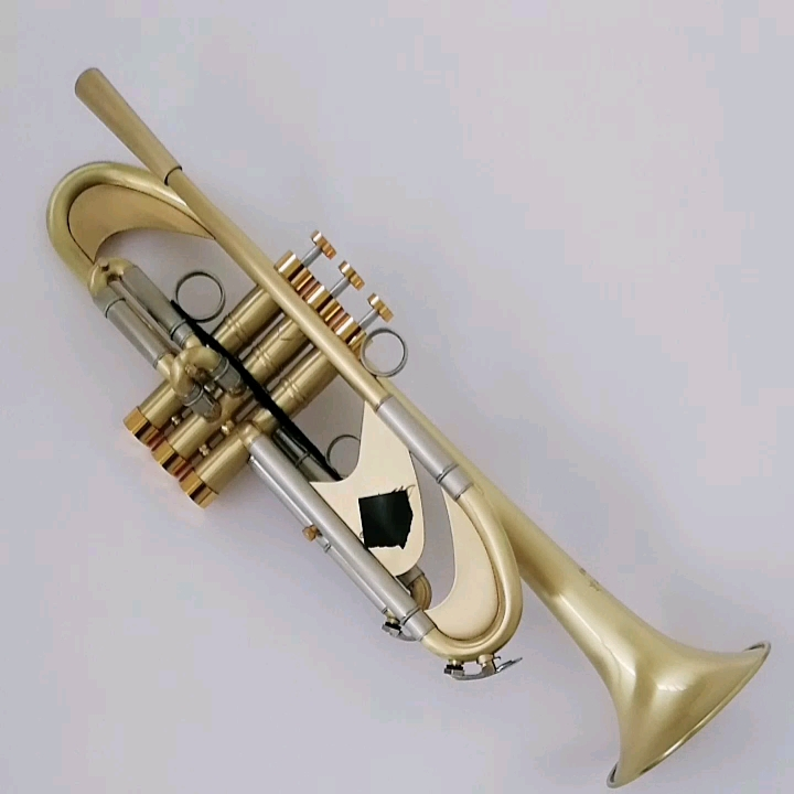 Bb key brass imported from Germany chinese good quality trumpet