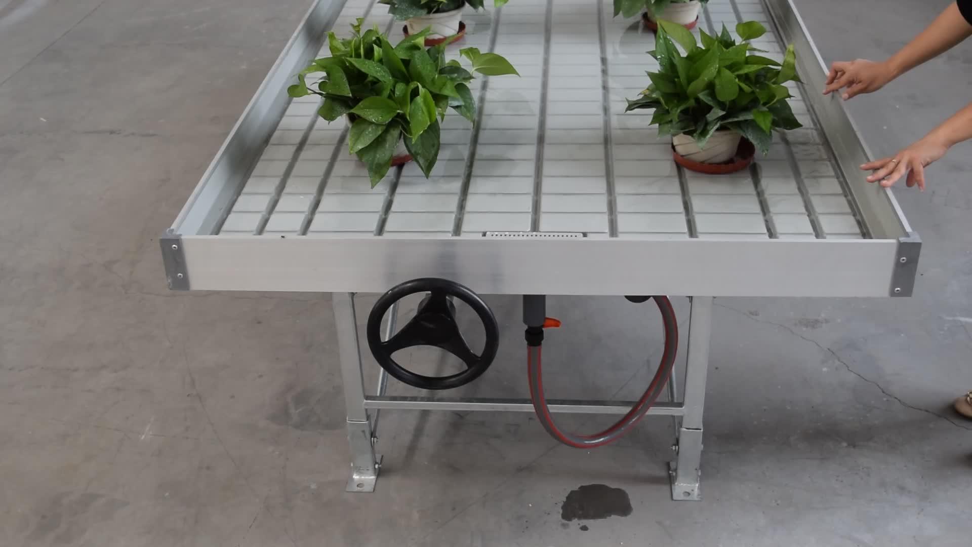 Multi spannweite landwirtschaftliche grünen haus hydrofarm 4'x8 roll kindergarten bank