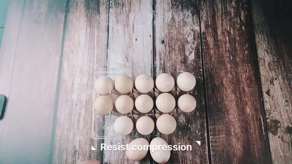 Eco-friendly customized wholesale disposable plastic duck egg tray/box/carton