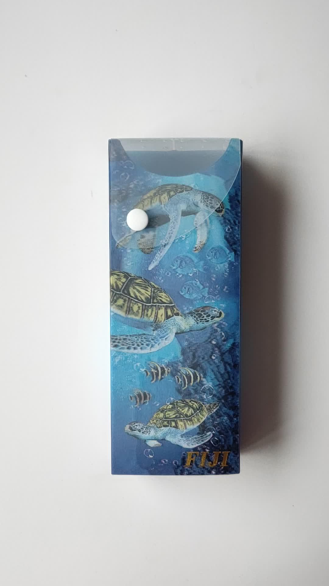 Yeni Ürünler Fantezi Çok fonksiyonlu Plastik 3D Merceksi Kaplumbağa Çocuklar Için Kalem Kutusu