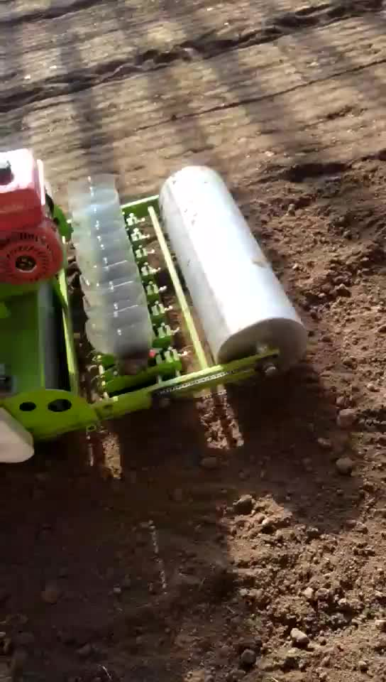 RYDB-600 automatic spinach seed planter / garlic planting machine for sale