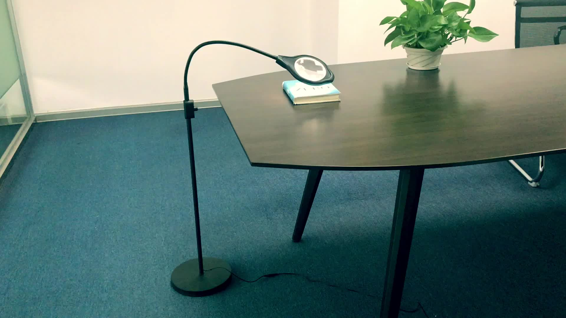 DH-88013 Color Temperature Adjustable LED Lighted Magnifier Floor Lamp