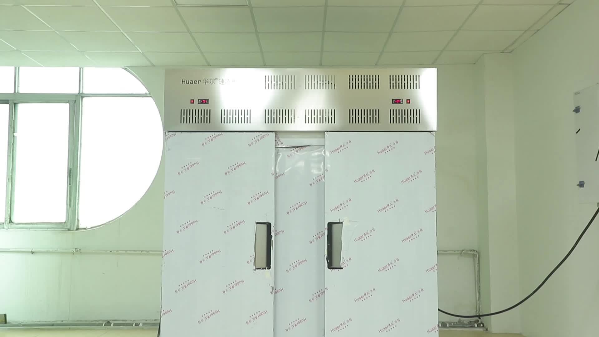 -Congelador de explosão de choque móvel de 80 graus para venda